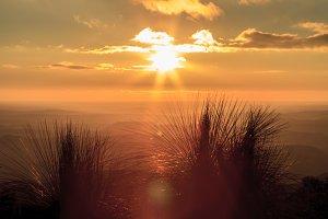 Orange Bunya Mountains Sunset
