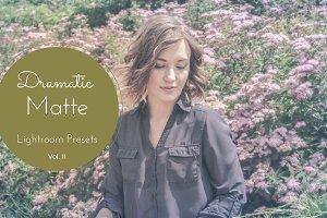 Dramatic Matte Lightroom Presets II
