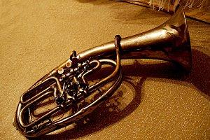 gold brass tuba