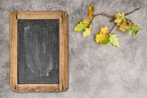 Autumn leaves and chalkboard