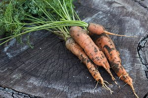 carrots on rustic wooden background