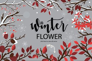 Winter flower Hand Drawn Vector Set