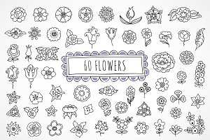 60 hand drawn flowers