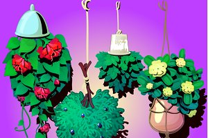Suspended ornamental plants