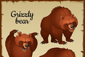Evil and sick brown bear