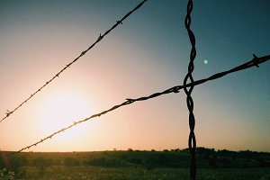 Barbed Wire in Front of a Sunset