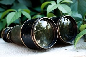 Antique binoculars III