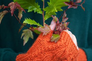 Female hands in orange mittens holding autumn leaves