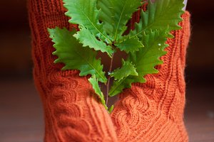 Knitted woolen warm socks with leafs