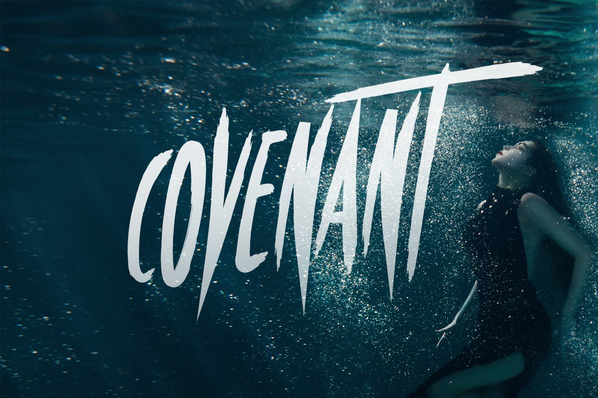 Covenant Brush Font Display Fonts Creative Market