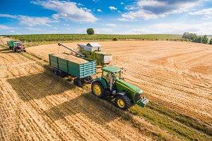 Combine Harvester Pouring Grain