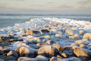 Icy rocks at the beach