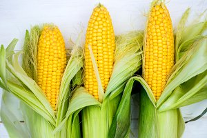 Yellow Corn Cobs