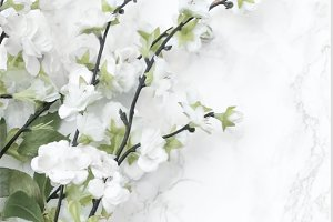 White Blooms & Marble Styled Stock