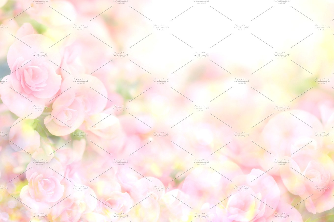 Soft Sweet Pink Flower Background Abstract Photos Creative Market