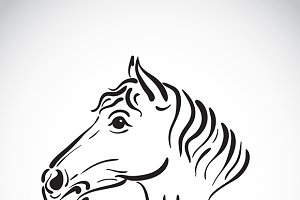 Vector of hand sketch a horse head.