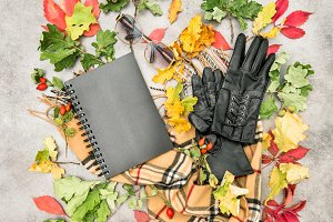 Autumn leaves fashion accessories