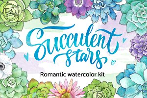 Succulent stars - romantic kit