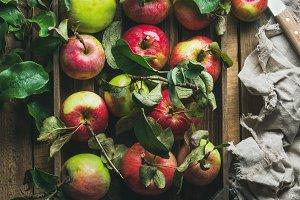 Seasonal garden harvest apples