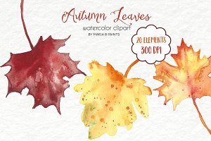 Watercolor Clip Art - Fall Leaves