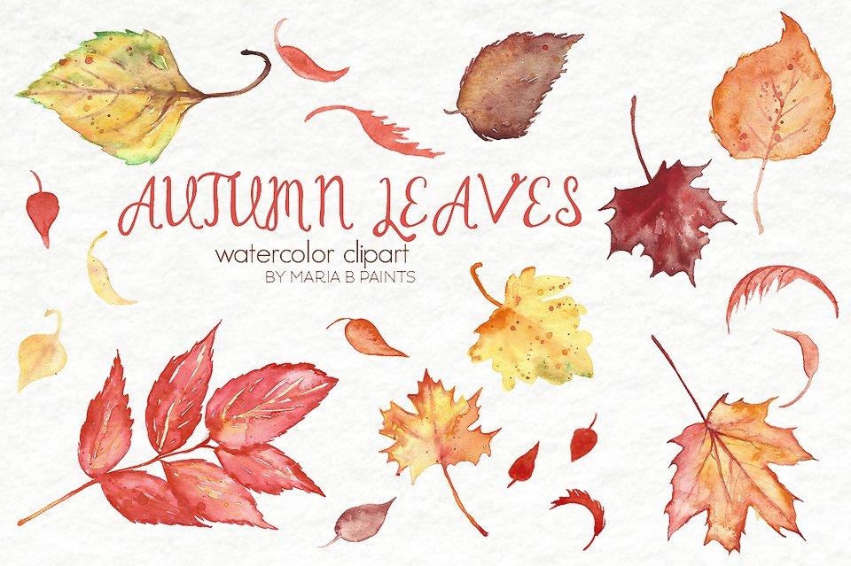 Watercolor Clip Art Fall Leaves Pre Designed Photoshop Graphics Creative Market