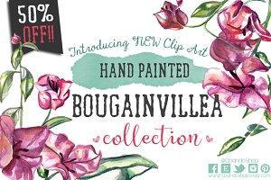 Bougainvillea floral watercolor clip