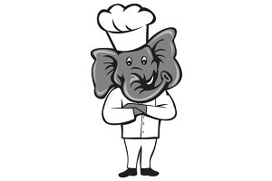 Chef Elephant Arms Crossed Standing