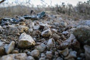 Stone gravel on the road tilt shift