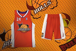 Logo basketball bulls