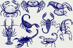 Crabs, crayfish, scorpions