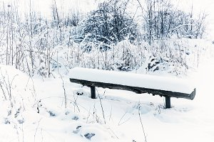 Winter park with bench