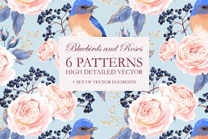 Bluebirds and Roses Patterns