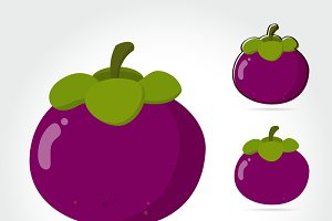 angosteen fruit Vector illustration
