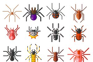 Flat spiders vector set