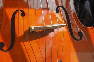 Cello stringed instrument
