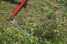 Sickle for grass cutting