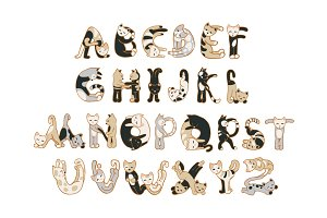 Cats alphabet. Vector