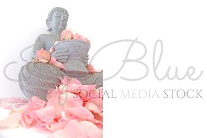 Rocking Rose - Petal Buddha