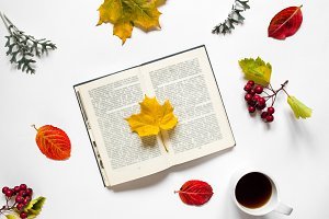 Workspace. Composition of book with maple leaf, a cup  tea, autumn leaves, red berries  haw on white background