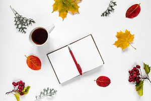 Workspace. Flat composition of opened notebook, pen, a cup of tea, autumn leaves, maple leaf, red berries of mountain ash on white background