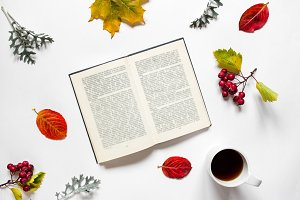 Workspace. Composition of text book, a cup of tea,autumn leaves, red berries of haw on white background