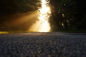 morning asphalt