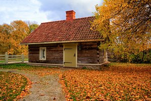 Little House in Autumn Leaves