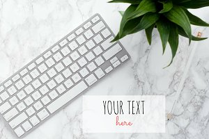 Keyboard, Plant on Marble Background