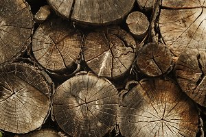 Pile Of Natural Wooden Logs