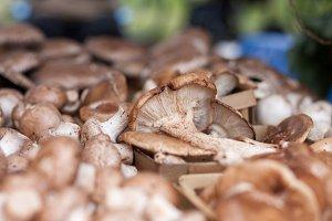 Farmer's Market Mushrooms