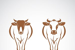 Vector of two cow .