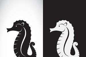 Vector of a sea horse design.