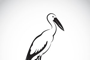 Vector of stork design.