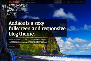 Audace – Responsive WordPress Theme